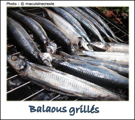 Balaous-grilles-1