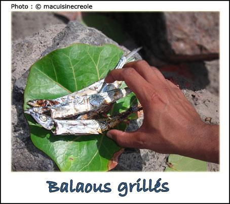 Balaous-grilles-3